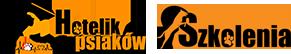 PSYjaciel Logo